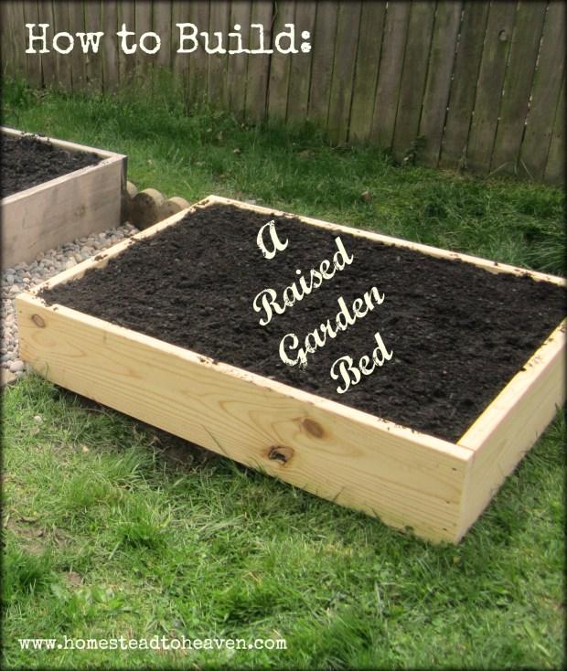 Why Build Raised Garden Beds - Home Design Ideas