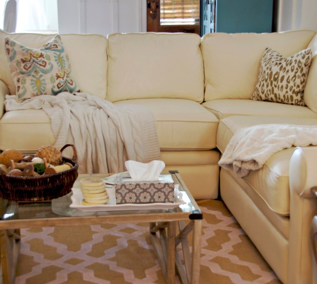 Living Room Painting Ideas India