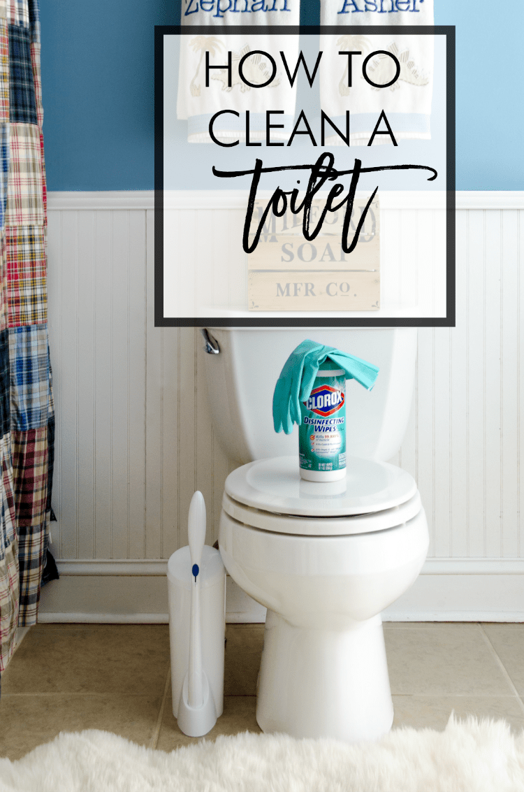 Spring Cleaning How to Clean a Toilet