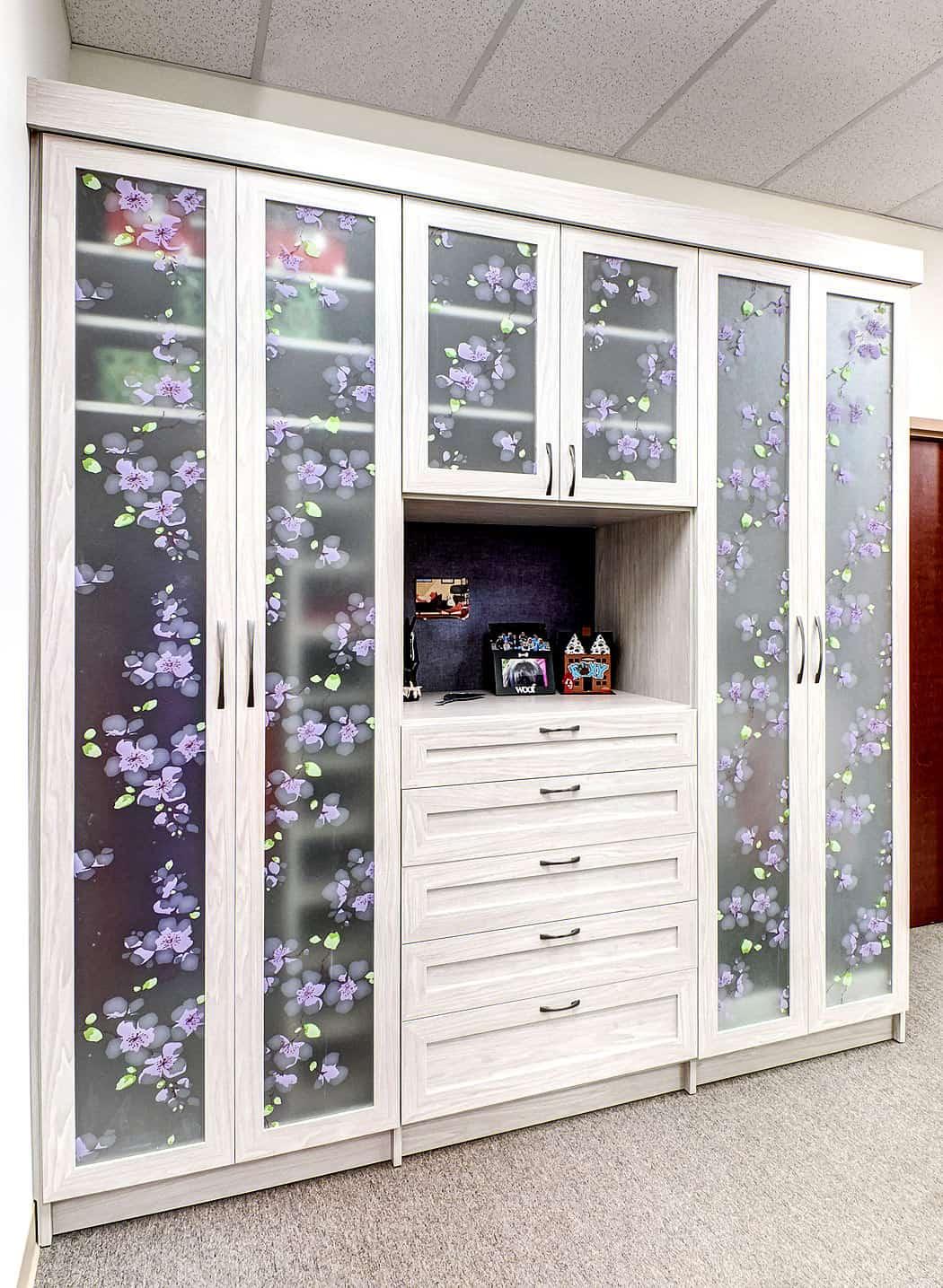 250 Bedroom Closet Ideas for 2019