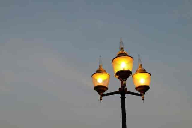 Bir parkta cıva buharlı lamba direği.