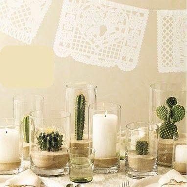 kaktus w słoiku