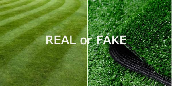 Choosing between real grass and fake grass - pros and cons of each