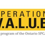 Operation V.A.L.U.E – Vulnerable Animals Left Unattended Everyday