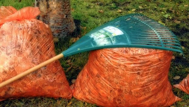 yard-waste-web