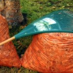 No more plastic for yard waste in Smiths Falls