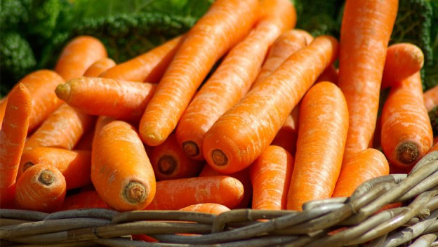 garden-carrot