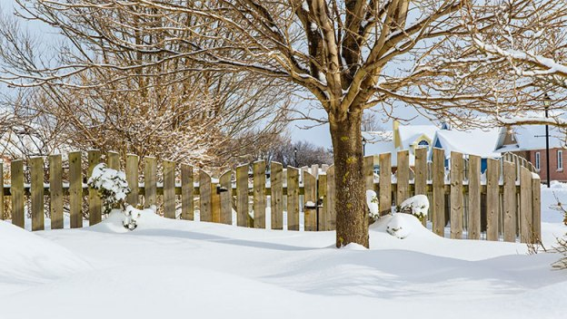 Snow covered yard.