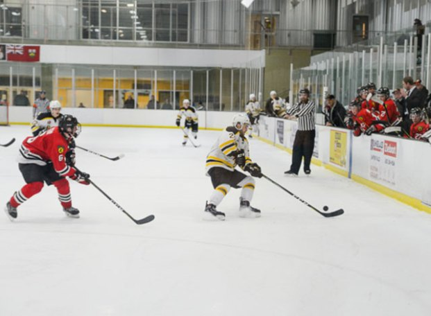 sf-bears-jan-16-15