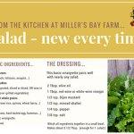 Life on the Farm: Lettuce