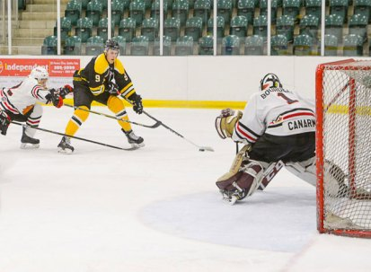 sf-bears-vs-brockville-braves-011