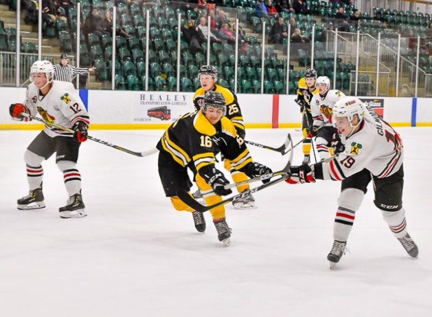 Bears_Hockey_Nov_06 037
