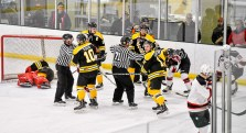 Bears_Hockey_Nov_16 001