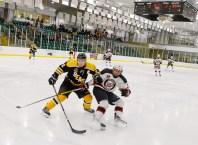 Bears_Hockey_Nov_16 022