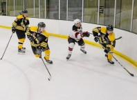 Bears_Hockey_Nov_16 024