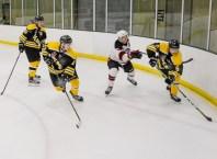Bears_Hockey_Nov_16 024