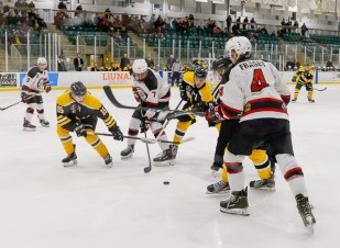 Bears_Hockey_Nov_16 031