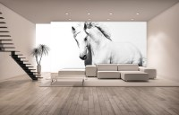 White horse bedroom wall mural | Online shop