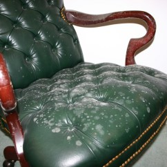How To Clean Leather Chair Wedding Covers Hire Portsmouth Surface Mold Homewatch Services Etc