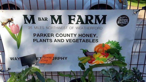 mand m farm