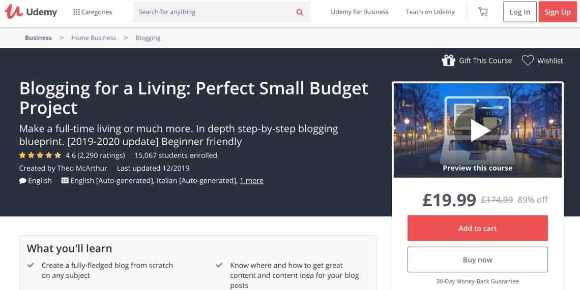 Blogging for a Living: Perfect Small Budget Project