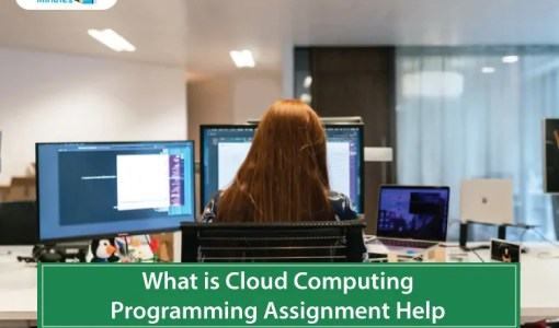 What-is-Cloud-Computing--Programming-Assignment-Help