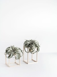 DIY Mini Plant Stands - Homey Oh My