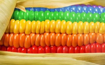 alimentos-que-te-hacen-gay-8