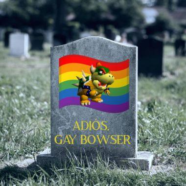 Nintendo gay Bowser