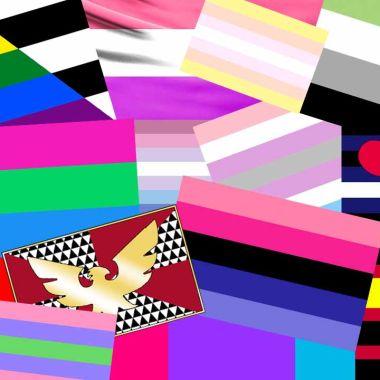 Banderas del Orgullo LGBT+ que pocos conocen