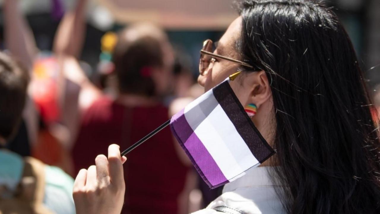 símbolos asexualidad comunidad asexual bandera triángulo de aven