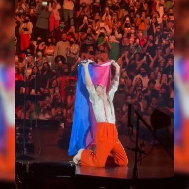 Harry styles con bandera bisexual
