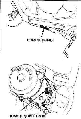 Идентификация скутеров