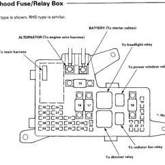 1991 Honda Accord Wiring Diagram Liftmaster Garage Door 95 Fuse Box Great Installation Of Lx Diagrams Rh Bwhw Michelstadt De 1995