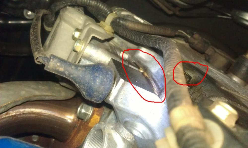 medium resolution of  2005 honda accord lx 100k oil leak near timing cover imag1336 jpg