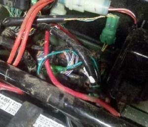 07 TRX420FM  electrical issues (mice)  Honda ATV Forum