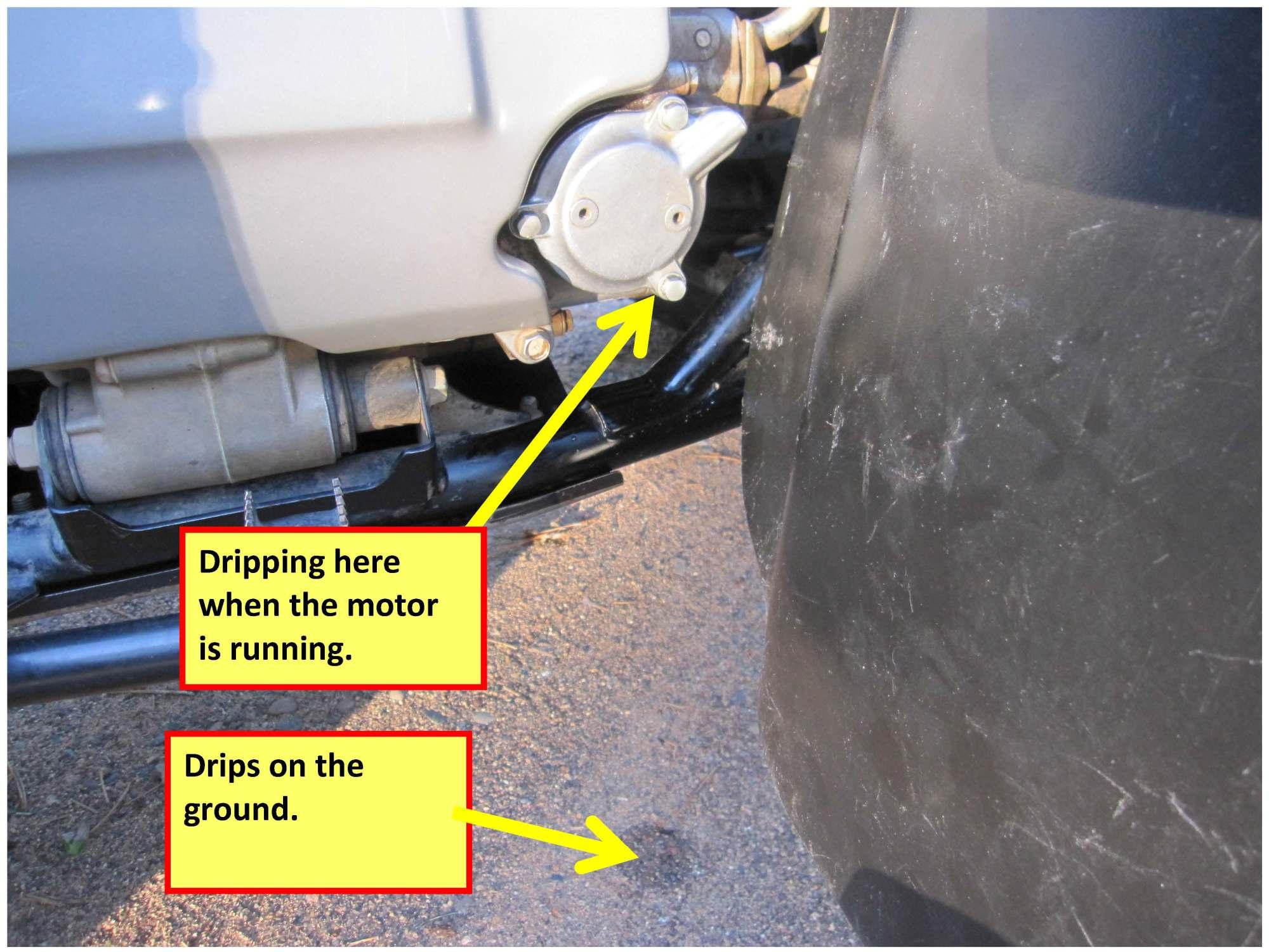 hight resolution of fuel filter location on honda 450