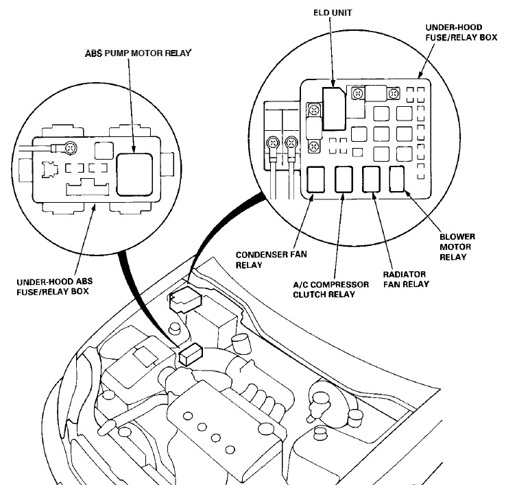 Wiring Diagram Further 1992 Honda Civic Fuse Box Diagram On Wiring