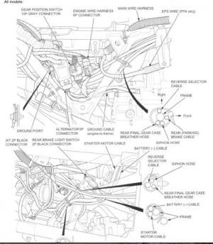 420 ground location  Honda Foreman Forums : Rubicon