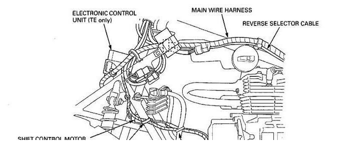 Honda Foreman Forums : Rubicon, Rincon, Rancher and Recon