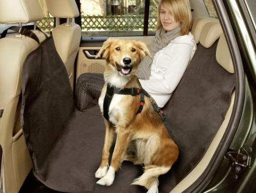 hoe beschermen jullie je auto voor een vieze hond