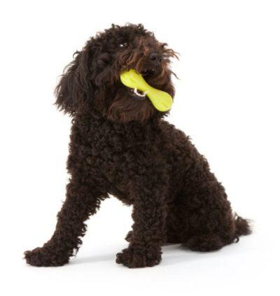 Zogoflex hurley hond groen