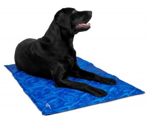 Hond op Trendpet arctic-comfort koelmat Maat L