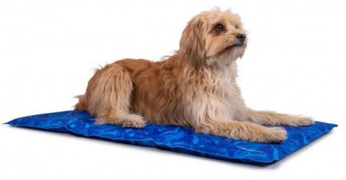 Hond op Trendpet arctic-comfort koelmat maat S