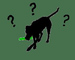 zoekende hond