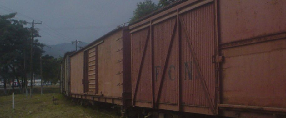 tren-en-el-M.-puerto-cortes