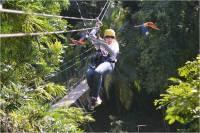 7 lugares para disfrutar de la aventura del canopy en ...