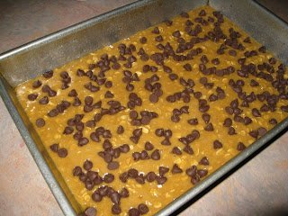 Chocolate Chip oat bars dough