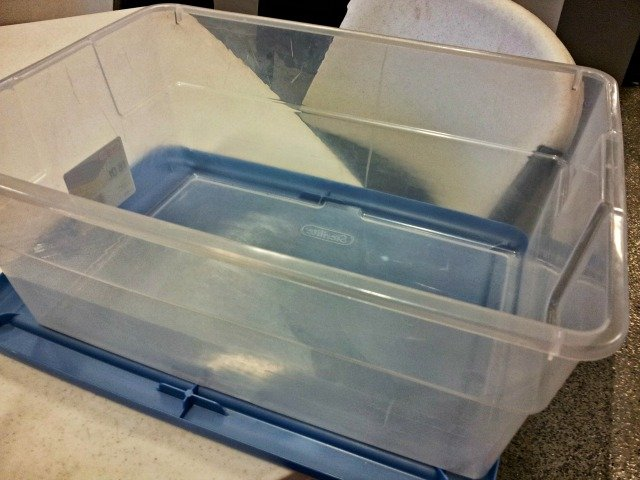 Empty container for homework kit