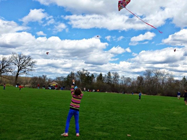 Fly a kite as a fun family activity